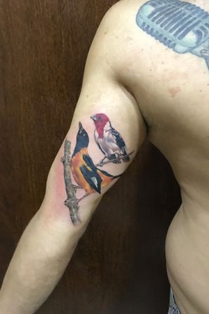 Studio Tattoo and soul O estúdio está localizado em Irecê na Bahia Rua São Jorge n32 Agende-se o horário WhatsApp ou email tattooandsoul@hotmail.com * WhatsApp (74) 99957-3677 #pauloduartetattoo #tattooandsoul #teamempire #empirestatetattooexpo #empireinks #sanidermselfie #sanidermuser #austin #inked #tattoo #sleevetattoos #texas #teamempire #photo #teampeak #texastattooartist #portraittattoos