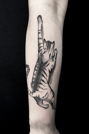 #cattattoo #sketchtattoo #tattoos # dotwork