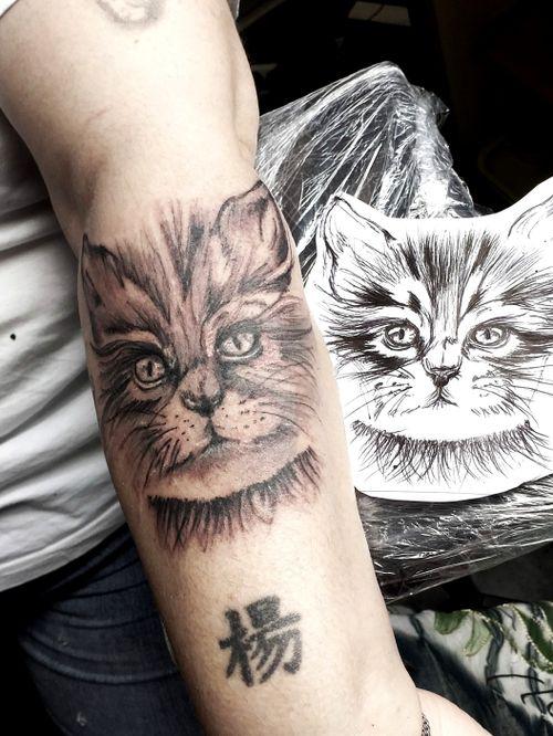#katze #katzenkopf #lines #fineline #germantattooer#natur #instagood#blackandgrey #tattoodo #blackandgrey #instatattoo #germantattooer #natur# #tattoodo #tattoodoambassasor #artist #inkedwoman#inkspector #follow #followforfollower