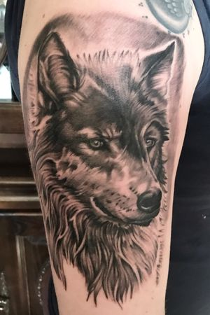 Wolf custom tattoo #wolftattoo #bnginksociety #inkedgirl #tattoo #tattoos #inked #ink #inkjecta