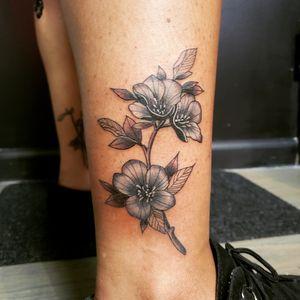 Black flowers.