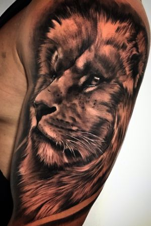 Lion #tattoo #liontattoo