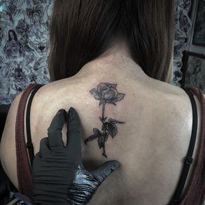 Loved doing this rose! 🥀 #rose #floral #blackwork #blackandgrey #backtattoo