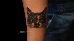 #portrait #portraittattoo #animalportrait #animalportraits #catportrait #cats #cattattoo #realism