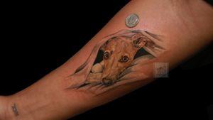 #portrait #colorportrait #dogportrait #animalportrait #tinytattoo #realism #color #colortattoo #dog #italiangreyhound