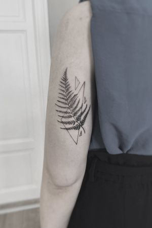 A fern 🌿 #dresdentattoo #ferntattoo #botanictattoo #flowerstattoo #girltatoo #tattooedkiev #tattoodo #floraltattoo #delicatetattoo #graphic #leaves #the_tattooed_ukraine