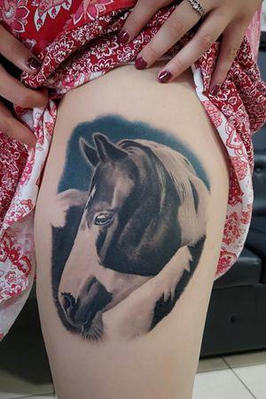 #horsetattoo #horse #Zeus