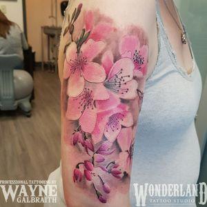 Beautiful cherry blossom tattoo! @cantcontainthewayne #colortattoo #wonderlandtattoo #wonderlandkitchener #colortattoo #mdwipeoutz #floraltattoo #ontariotattoos #canadiantattooartist #kwtattoos #kwawesome www.wonderlandstudioskw.com
