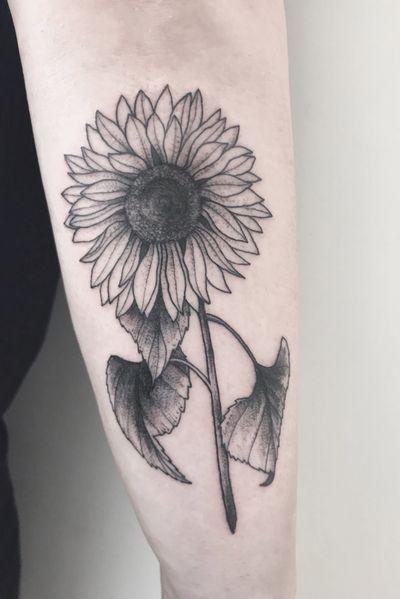 Sunflower linework #blackwork #blackworktattoo #linework #lineworktattoo #fineline #etching #illustration #femaletattooartist #femaleartist #flowertattoo #flower #flowers #flowerpower #sunflowers #botanical #botanicaltattoo #sunflower