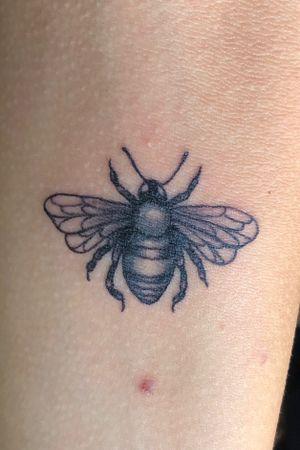 #newtattoo #bee #tattoobee