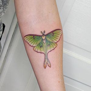 Luna moth #tattoo #tattoolife #tattooart #saniderm #envyneedles #rosewatertattoo #tattoos #tattooartist #art #ink #inked #lunamoth #inkedmag #portland #portlandtattooers #portlandtattoo #pdx #pdxartists #pdxtattooers #pdxtattoo #tattooed #tatsoul #fusiontattooink #fkirons #bestink #moth #tattoosnob #stencilstuff #mothtattoos #eternalink