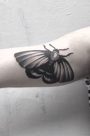 #moth #ash #butterfly #blackwork #black #blackworkers #wings #blkttt #berlin