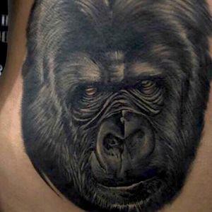 Gorrila custom tattooing #gorrilatattoo #tattoo #tattoos #inked #ink