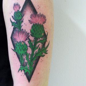 #thistletattoo #thistles #thistle  #botanicaltattoo #botanical  #flowertattoo #flower #colortattoo #color #hamburg #qttr
