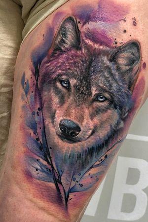 #watercolor #wolf #color #portrait #barcelona #bcntattoo