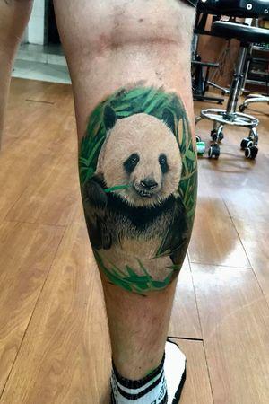#panda #danangtattoo #vietnam #tattoodanang #bomtattoo
