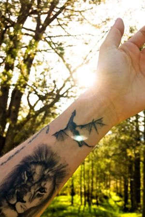 ... sōvegon #ink #tattoo #got #dragon #lion #gameofthrones #inked #fly #nature #sun