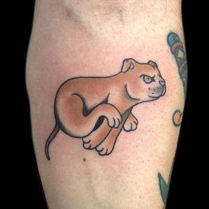 #pitbulltattoo #dogtattoo #oldschooltattoo #traditionaltattoo #tattoo #tatuagem #tatuagemoldschool #tatuagemtradicional