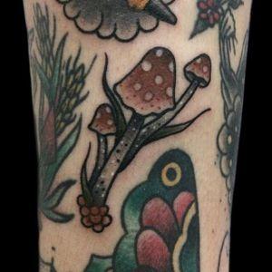 #mushroomtattoo #oldschooltattoo #traditionaltattoo #tattoo #tatuagem #tatuagemoldschool #tatuagemtradicional #gapfillertattoo