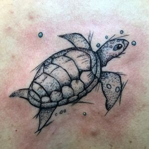 Turtle trouble. #turtle #sketch #stickandpoke #stippling #seacreature #seaturtle #renotattoo #girlswithtattoos