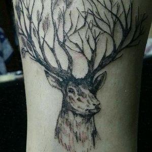 Ciervo de 10cm aprox #black #blackandgrey #realism #deer #animal #Argentina