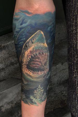 #shark #sharktattoo #colorrealism #somatattooart #inked #sullen #realism #realistictattoo #budapest #switzerland #fortlauderdale