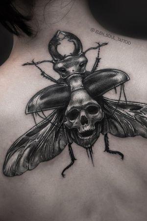 #insect #skull #dark #horror #elensoul