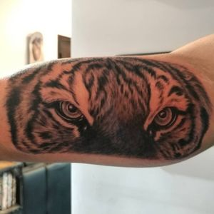 #tigereyes #blackandgreytattoo