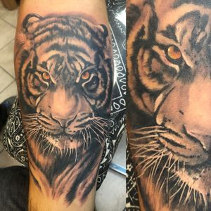 Black and gray surrealistic tiger forearm colored eyes