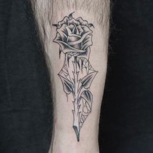 BEAUTY FOR ETERNITY/ Thanks for your trust Neil. Thansk for looking. Booking: mikeend666@gmail.com or DM #rose #spiderweb #blackwork #fineline #blackandgrey #paristattoo #tattooparis #paris #rosetattoo #tatouage #tttism #darktattoo #blackworktattoo #tattoooftheday