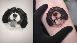 #velosotattooartist #tattooed #tattooart #photooftheday #color #colortattoo #watercolor #piranhatattoosupplies #velosotattooartist #balmtattooportugal #portugal #luxemburgo #tigereyes #healed #photooftheday #microrealistic