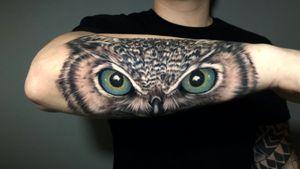 Owl freen eyes