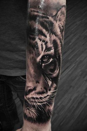 #marco #pik #ass #marcopikass #pikasstattoo #tattoo #tiger #portrait #portraitart #realistic #realism #realistisch #3d #hyper #best #arm #german #germany #artist #tattooartist #ketsch #mannheim #heidelberg