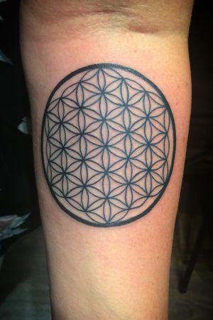 Flower of life dotwork tattoo #tattoo #ink #inked #floweroflife #sacredgeometry #dotwork #dotworktattoo #maryjane #maryjanetattoo #studioseventattoo #stockholm #sweden