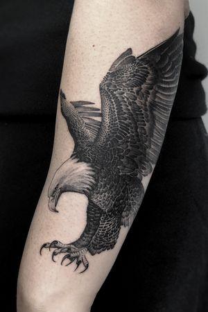 Black and grey single needle eagle done @southcitymarket