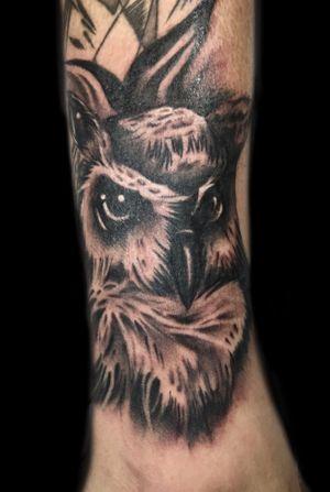 A Tiny Realism Owl Filler.
