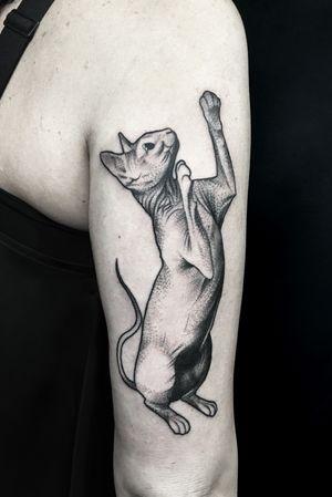 #cat #cattattoo #dotwork #tattoo #pet