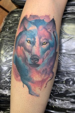 Watercolor wolf on a calf