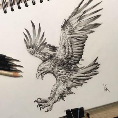 #aigle #tattoodesign #tattooart #tattoolover #tattoolove #art #handdrawing #handsketch #drawing #artist #artistofinstagram #artsy #instaart #instaartist #artwork #dessin #eagledesign #berlintattoo #guiartwork #realismdrawing #realism #eagle #artoftheday #tattoodesign #darkartists #artoftheday #subculturetattoo #eagletattoo #pencildraw #tattooer