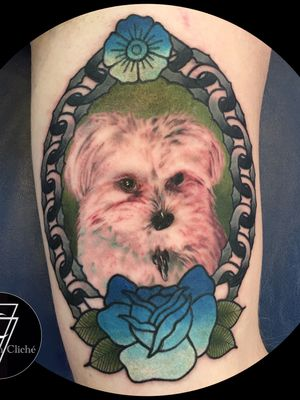 Photo realism dog portrait surrounded by american traditional accents #portait #dogportrait #realism #realismportrait #neotraditional #traditional #animalportraits #colorportrait #stylefusion #customtattoos #firsttimetattoo #dogtattoos #memorialtattoo #memorial