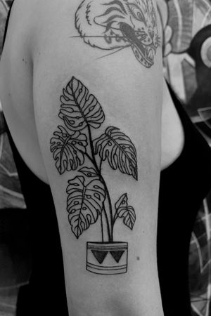 Plant and Pot #planttattoo #armtattoo #blackonly