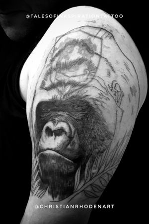 Wicked silverback cover up stared on Gavin!