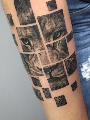 Lion #tattooartist #liontattoo #blackandgrey #forearm #blackwork