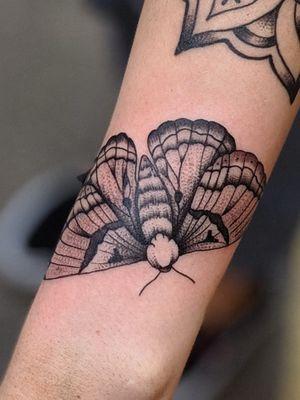 Dotwork Moth design