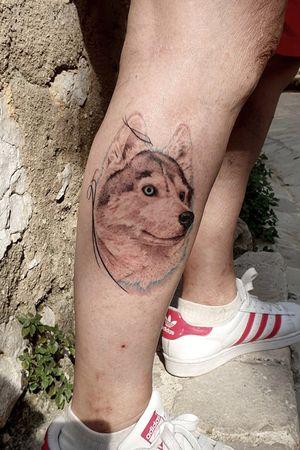 Chien loup #dog #portrait #portraittattoo #wolf