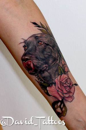 Dog portrait- memorial tattoo- animal tattoo- dog tattoo- roses- dog and roses- neo traditional