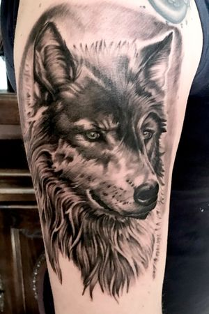 Wolf realistic tatttoo inked by erwin