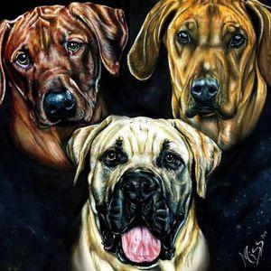 Artiste miss animale