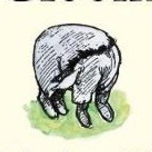 E.H. Shepard Winnie the Pooh drawing #eeyore #winniethepooh