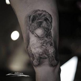 Dog tattoo by Stefano Alcantara #StefanoAlcantara #dogtattoos #dogtattoo #dog #animal #petportrait #pet #love #family